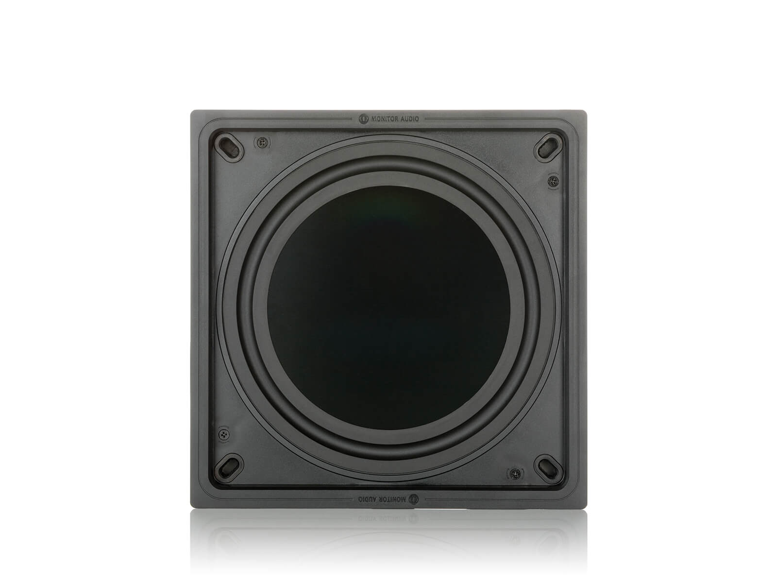 IWS-10 subwoofer, face-on.